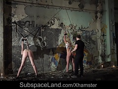 Two Slaves In Brutal Pain And...