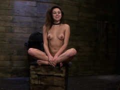 Submissive babe fucked